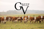 Grand View Beef
