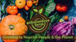 Echollective Farm and CSA